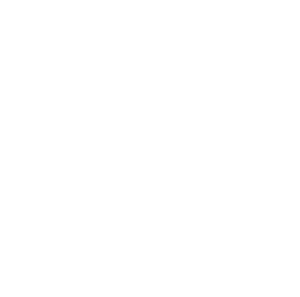 Logo de Youth For Climate en blanc